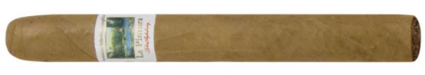 La Pintura Zigarre